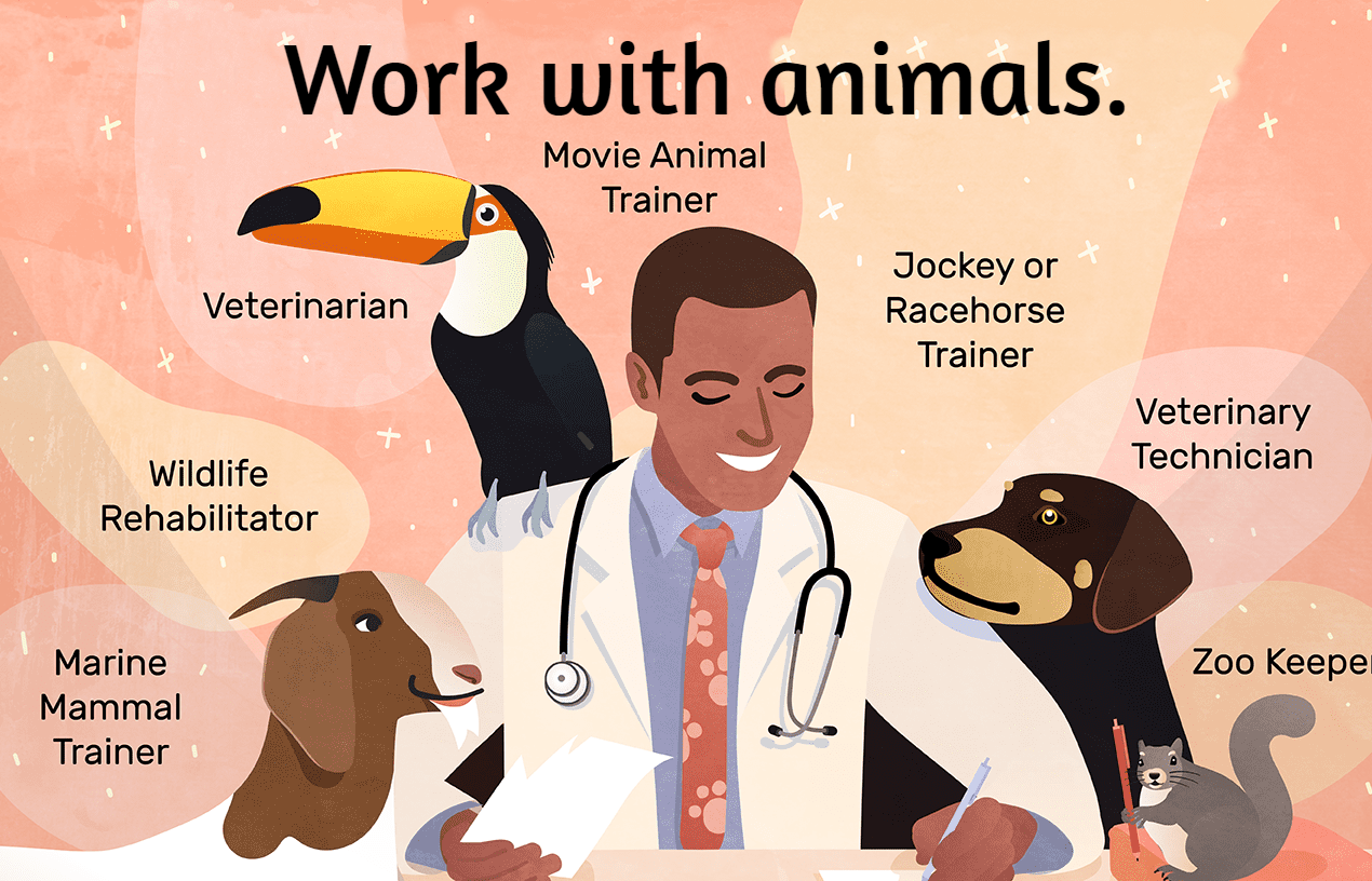 Work with animals.